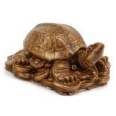 Żółw mały